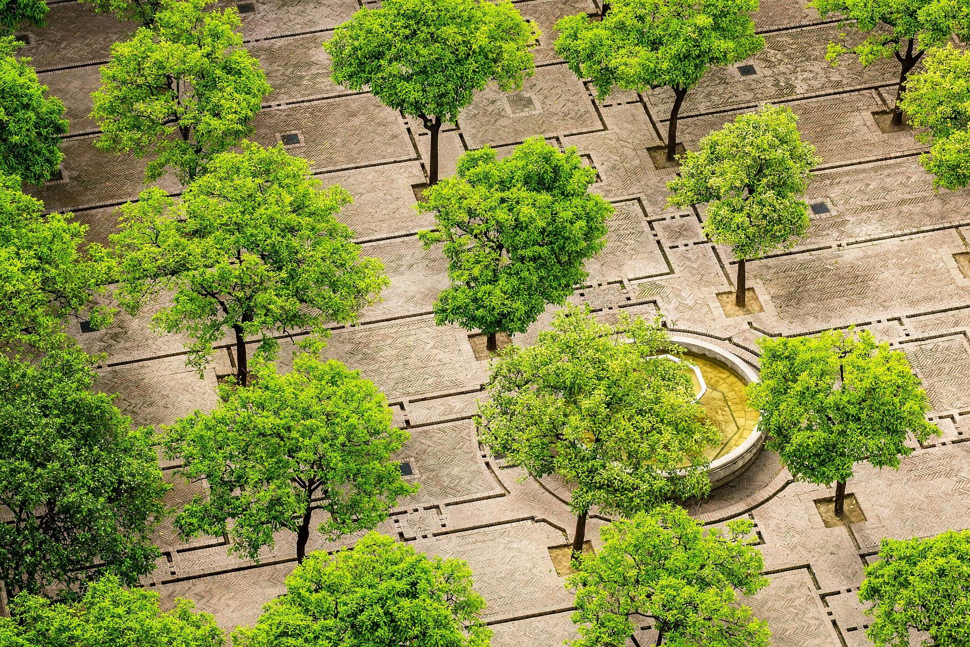 Eurovértice lucha contra el cambio climático a través del Proyecto LIFE Adaptate